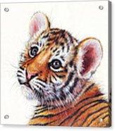 Tiger Cub Watercolor Painting Acrylic Print