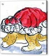 Tiger Gets Stuck In A Santa Hat Acrylic Print