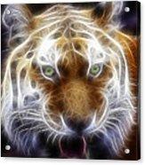 Tiger Greatness Digital Painting Acrylic Print