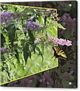 Tiger Swallowtail Oob-featured In Beautycaptured-oof-harmony And Happiness Acrylic Print