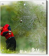Tiger Woods - The Chevron World Challenge Acrylic Print