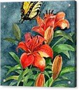 Tigers Acrylic Print