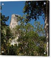 Tikal Pyramid 4a Acrylic Print