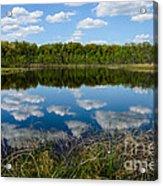 Timberland Lake Acrylic Print