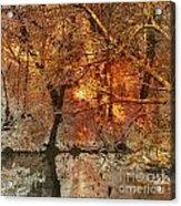 Time IIi Acrylic Print