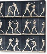 Time Lapse Motion Study Men Boxing Acrylic Print