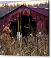 Tin Roof Rusted Acrylic Print by Bill Cannon