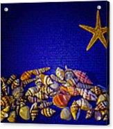Tiny Sea Shells Acrylic Print
