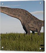 Titanosaurus Standing In Swamp Acrylic Print