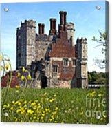 Titchfield Abbey Buttercups Acrylic Print