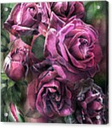To Be Loved - Mauve Rose Acrylic Print