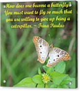 To Become A Butterfly Acrylic Print