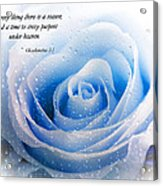 To Every Thing There Is A Season Acrylic Print