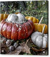 To Swell The Gourd Acrylic Print
