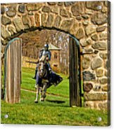 To The Rescue Acrylic Print