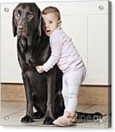 Toddler With Dog Acrylic Print by Justin Paget