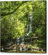 Tom Branch Falls Acrylic Print