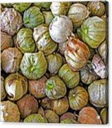 Tomatillos At The Local Market Acrylic Print