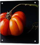 Tomato Acrylic Print