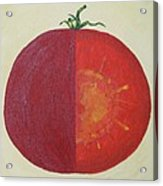 Tomato In Two Reds Acrylic On Canvas Board By Dana Carroll Acrylic Print