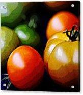10044 Tomatoes Acrylic Print