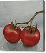 Tomatoes On Vine Acrylic Print