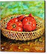 Tomatoes Acrylic Print