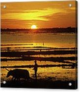 Tonle Sap Sunrise 01 Acrylic Print