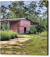 Tool Shed Out Back Acrylic Print