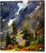 Top Of Cascade Pass Acrylic Print