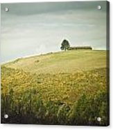 Top Of The Hill Acrylic Print