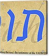 Torah Acrylic Print