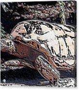 Tortoise Of Stone Acrylic Print