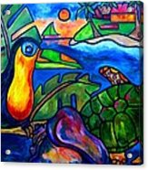 Tortuga Eco Tour Acrylic Print