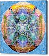 Torusphere Synthesis Cell Firing Soulin IIi Acrylic Print
