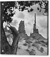 Totem Pole - Arizona Acrylic Print