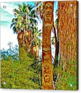 Totem Pole In Coachella Valley Preserve-california Acrylic Print