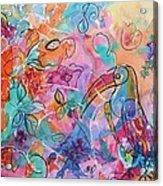 Toucan Dreams Acrylic Print