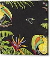 Toucan Fun Acrylic Print by Nickie Bradley