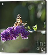 Touchdown Acrylic Print by Affini Woodley