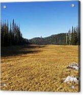 Towards Hand Lake And Mt Jefferson Acrylic Print