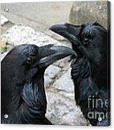Tower Ravens Acrylic Print
