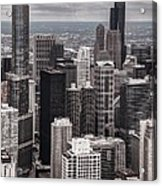 Towers Of Chicago Acrylic Print