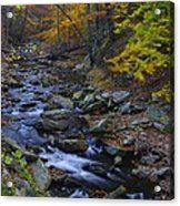 Tracking Color - Big Hunting Creek Catoctin Mountain Park Maryland Autumn Afternoon Acrylic Print