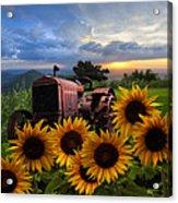 Tractor Heaven Acrylic Print by Debra and Dave Vanderlaan
