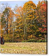 Tractor In Autumn New England Field Acrylic Print
