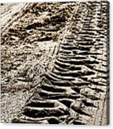 Tractor Tracks In Dry Mud Acrylic Print