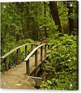 Trail Bridge Toketee 1 Acrylic Print