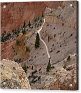 Trail Into The Past Acrylic Print