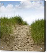 Trail Over The Dune To The Summer Beach Acrylic Print